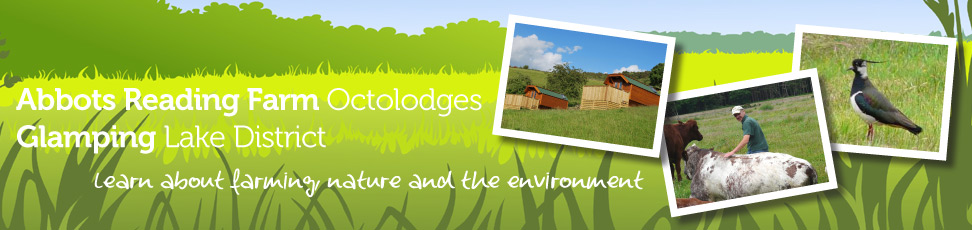 Contact Us - Abbots Reading Farm